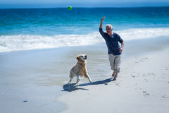 Mature man throwing a ball to his dog Stock Photos