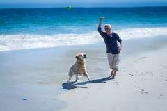 Mature man throwing a ball to his dog stock photos