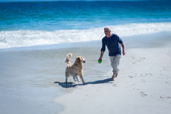Mature man throwing a ball to his dog royalty free stock images