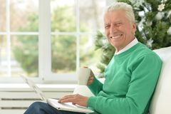 Mature man using laptop. Sitting near window Stock Image