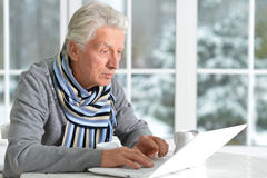 Mature man using laptop. Sitting near window Stock Photo