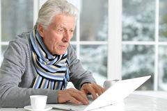 Mature man using laptop. Sitting near window Stock Photos