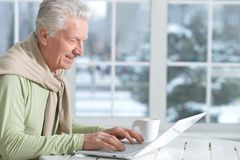 Mature man using laptop. Sitting near window Royalty Free Stock Photo