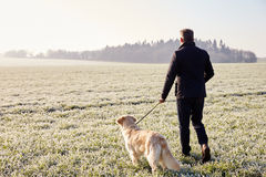 Mature Man Walking Dog In Frosty Landscape Royalty Free Stock Image