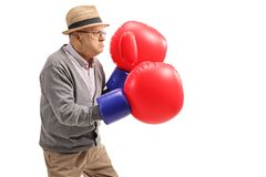 Mature man wearing a pair of big boxing gloves. Isolated on white background Stock Photos