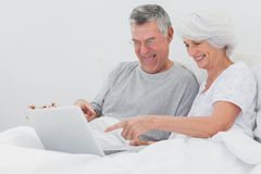 Mature man with wife pointing at a laptop Royalty Free Stock Photo
