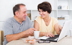 Mature man and woman looking at laptop Royalty Free Stock Photo