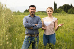Mature man and woman standing in wheat field Stock Photos