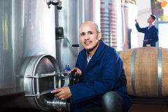 Mature man working on winery Royalty Free Stock Image