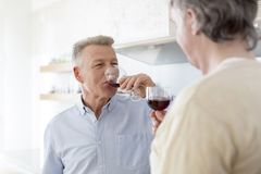 Mature men drinking wine while standing at home royalty free stock image