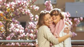 Mature mother and daughter hugging. Congratulations on Mother`s Day. Beautiful spring day, blooming magnolia stock video footage