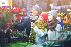 Mature parents with teenage girl at counter with Poinsettia and Royalty Free Stock Image