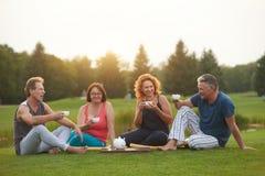 Free Mature People Having Tea Coversation. Stock Image - 117085641