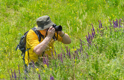 Mature photographer taking a photo of wild nature. Enthusiastic mature photographer taking a photo of wild nature Royalty Free Stock Images