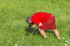 Mature photographer taking a photo of wild nature. Hard bend -  mature photographer taking a photo of wild nature Stock Photos