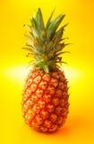 Mature Pineapple Stock Photo