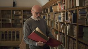 Mature professor is reading book standing in antique library. Mature professor is reading book standing in antique library, bearded man wearing eyeglasses is stock video footage