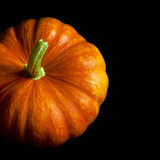 Mature pumpkin on a black background Stock Image