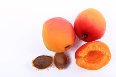 Ripe red apricot royalty free stock photo