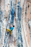 Mature Rock Climber ascending steep colorful rocky Wall Lead Climbing Stock Images