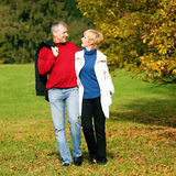 Mature romantic couple in a park Royalty Free Stock Photo