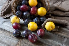 Mature round blue plums  in wicker baskets Royalty Free Stock Photos