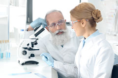Mature scientists working together in lab and looking at each other Stock Photos