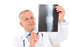 Mature senior doctor male hold x-ray Royalty Free Stock Image