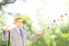 Mature smiling man holding a cane and looking at butterflies Stock Image