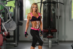 Mature Sporty Fit Caucasian Female Model Posing. Portrait Of A Mature Physically Fit Woman Showing Her Well Trained Body - Muscular Athletic Bodybuilder Fitness royalty free stock photo