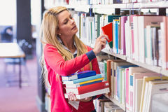 Mature student in library picking book Royalty Free Stock Images