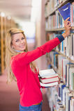 Mature student picking out book in library Royalty Free Stock Image