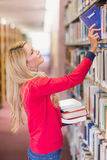 Mature student picking out book in library Royalty Free Stock Photo