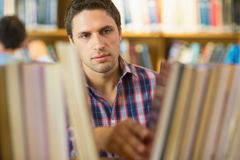 Mature student selecting book from shelf in library Royalty Free Stock Photography