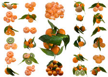 Mature Sweet Tangerine. Vitamin  Tangerines  Fresh  Juice  Juicy  Ripe  Colour  It is white  tasty   Segment royalty free stock images