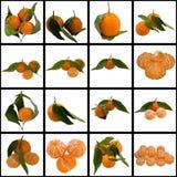 Mature Sweet Tangerine. Vitamin Tangerines Fresh Juice Ripe Colour It is white tasty Segment stock photography