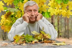 Mature thoughtful man outdoors Royalty Free Stock Image