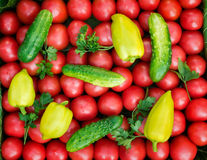 Mature tomatoes of bright red color of the small size, pepper an Royalty Free Stock Photography