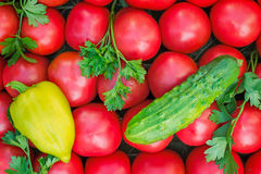 Mature tomatoes of bright red color of the small size, pepper an Royalty Free Stock Images