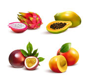 Mature Tropical Fruits Set royalty free illustration