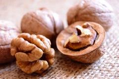 Mature walnuts on woven fabric Stock Image