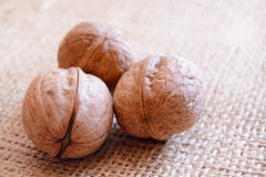Mature walnuts on woven fabric Royalty Free Stock Photography