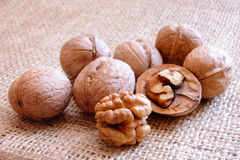 Mature walnuts on woven fabric Royalty Free Stock Image