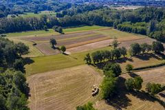 Mature wheat farmed fields aerial drone panorama royalty free stock photo