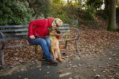 Mature woman with Alsatian dog In the park. In winter royalty free stock photos