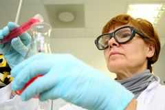 Mature woman as a research assistant in laboratory Stock Images