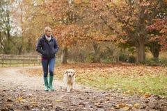 Mature Woman On Autumn Walk With Labrador Royalty Free Stock Photos