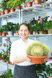 Mature woman chooses cactus Stock Photography