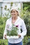 Mature Woman Choosing Plants At Garden Center Stock Image