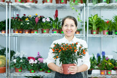 Mature woman with citrus plant in  store Royalty Free Stock Photos